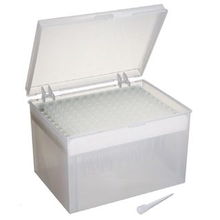 Pipette tips in rack